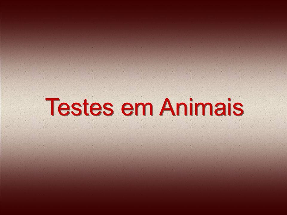 Os animais são forçados a ingerir e inalar produtos químicos.