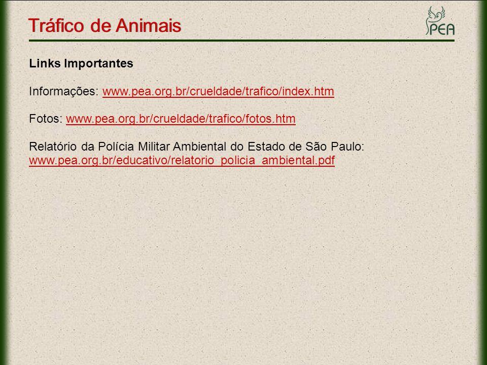 Tráfico de Animais Links Importantes Informações: www.pea.org.br/crueldade/trafico/index.htmwww.pea.org.br/crueldade/trafico/index.htm Fotos: www.pea.