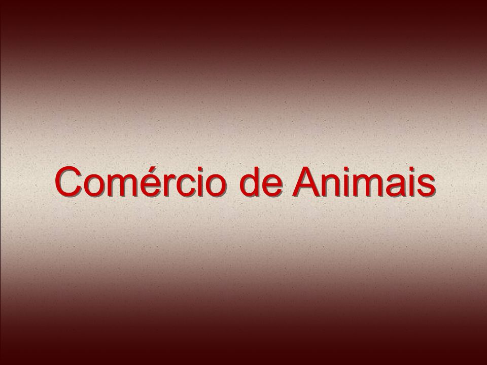 Comércio de Animais