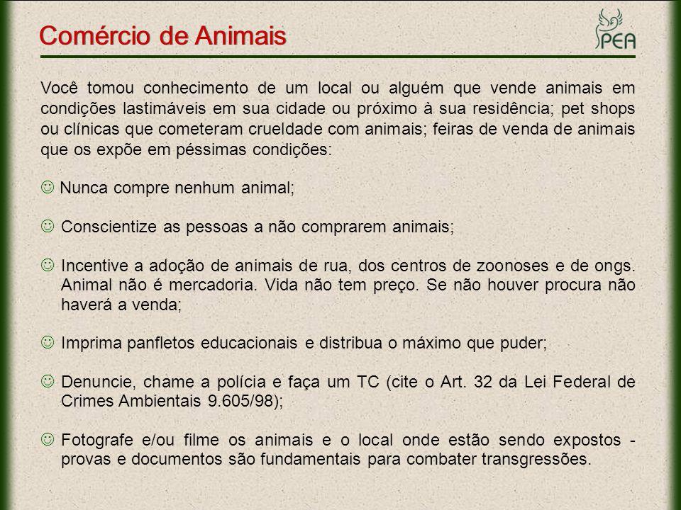Você tomou conhecimento de um local ou alguém que vende animais em condições lastimáveis em sua cidade ou próximo à sua residência; pet shops ou clíni