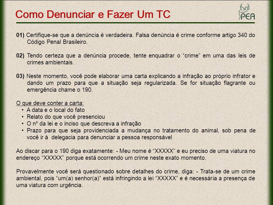 01) Certifique-se que a denúncia é verdadeira. Falsa denúncia é crime conforme artigo 340 do Código Penal Brasileiro. 02) Tendo certeza que a denúncia