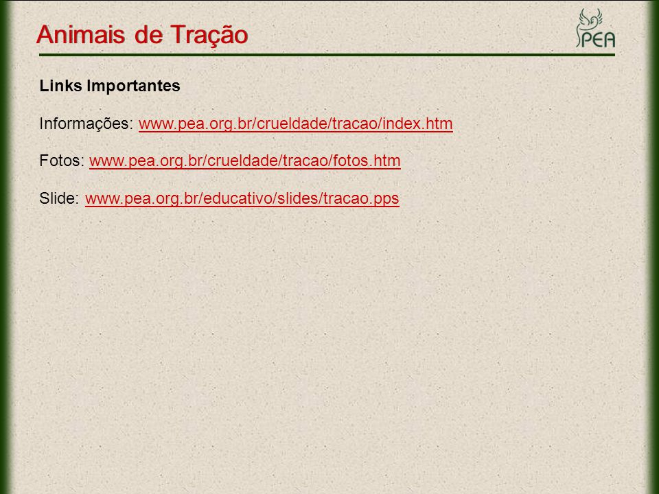 Animais de Tração Links Importantes Informações: www.pea.org.br/crueldade/tracao/index.htmwww.pea.org.br/crueldade/tracao/index.htm Fotos: www.pea.org