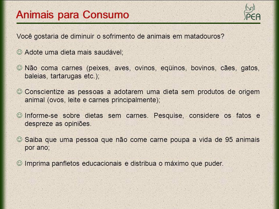 Animais para Consumo Você gostaria de diminuir o sofrimento de animais em matadouros? Adote uma dieta mais saudável; Não coma carnes (peixes, aves, ov
