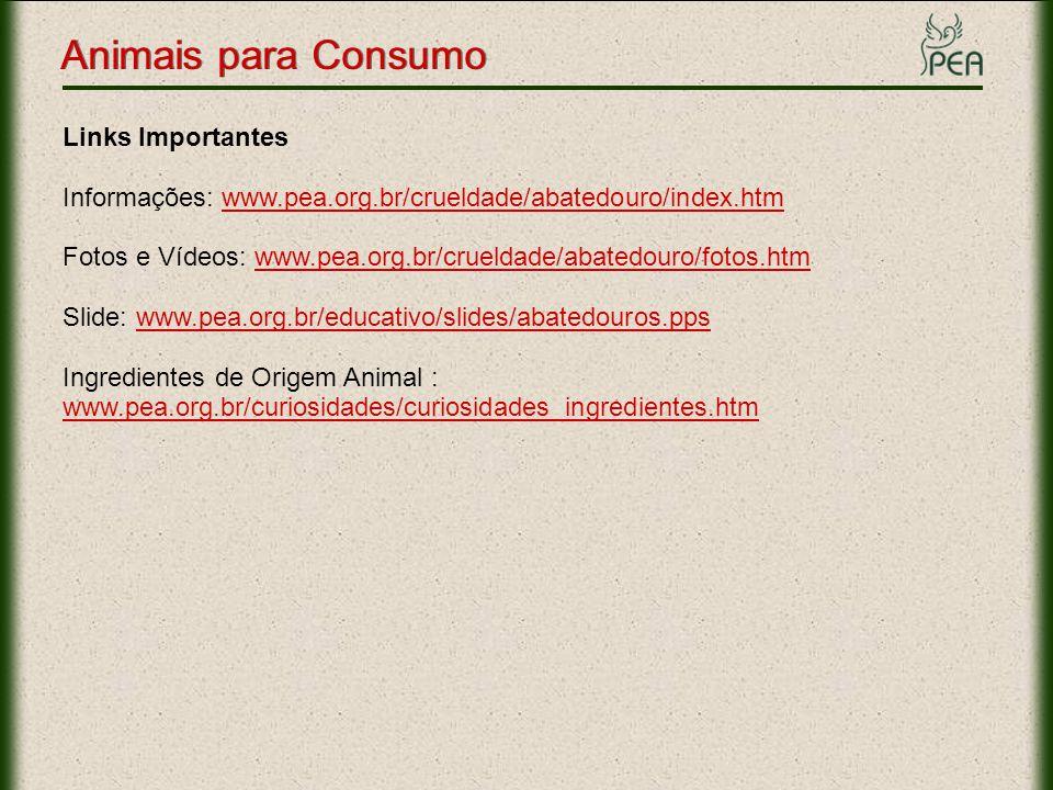 Animais para Consumo Links Importantes Informações: www.pea.org.br/crueldade/abatedouro/index.htmwww.pea.org.br/crueldade/abatedouro/index.htm Fotos e