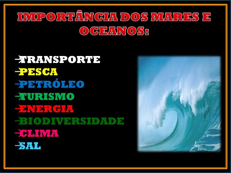 TRANSPORTE PESCA PETRÓLEO TURISMO ENERGIA BIODIVERSIDADE CLIMA SAL