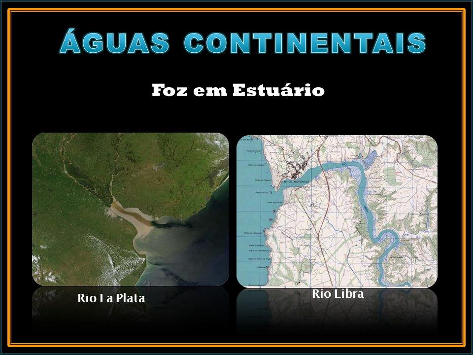 Foz em Estuário Rio La Plata Rio Libra