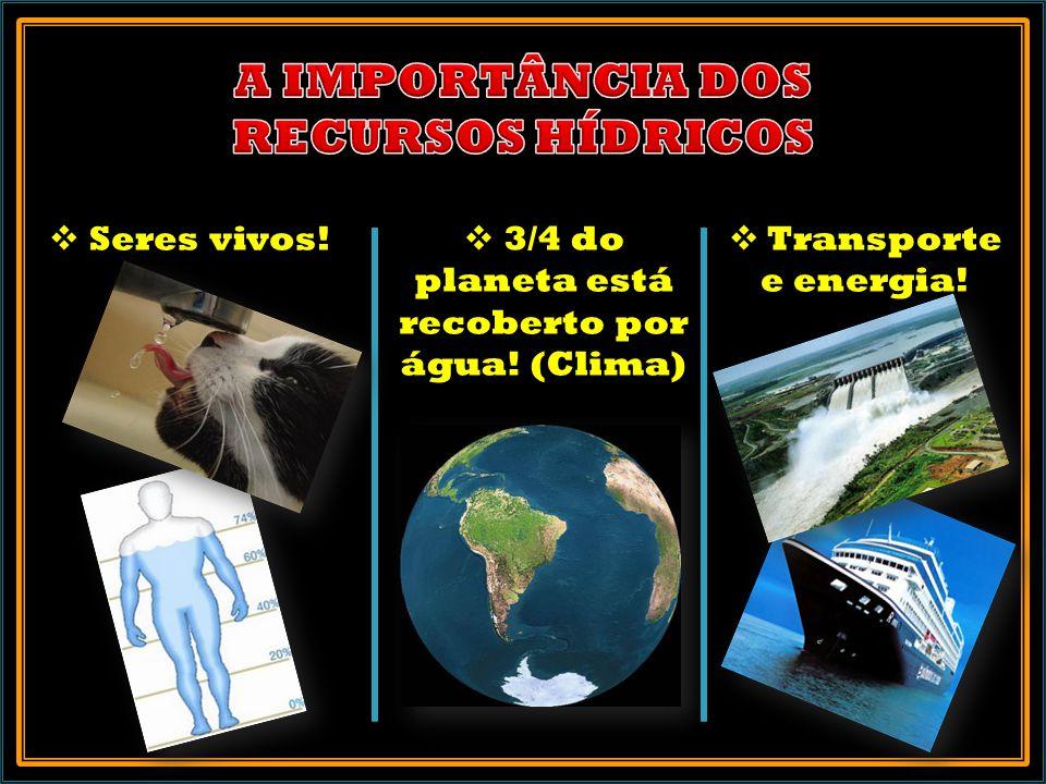Seres vivos! 3/4 do planeta está recoberto por água! (Clima) Transporte e energia!