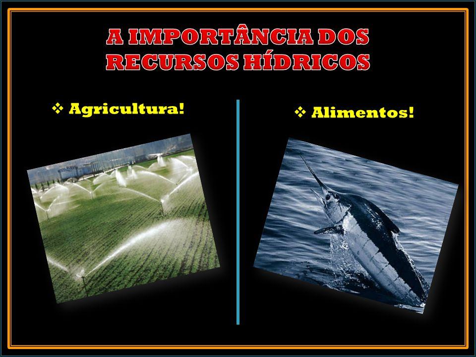 Agricultura! Alimentos!