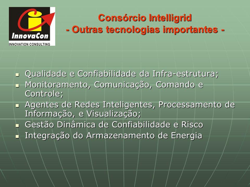 Consórcio Intelligrid - Outras tecnologias importantes - Qualidade e Confiabilidade da Infra-estrutura; Qualidade e Confiabilidade da Infra-estrutura;