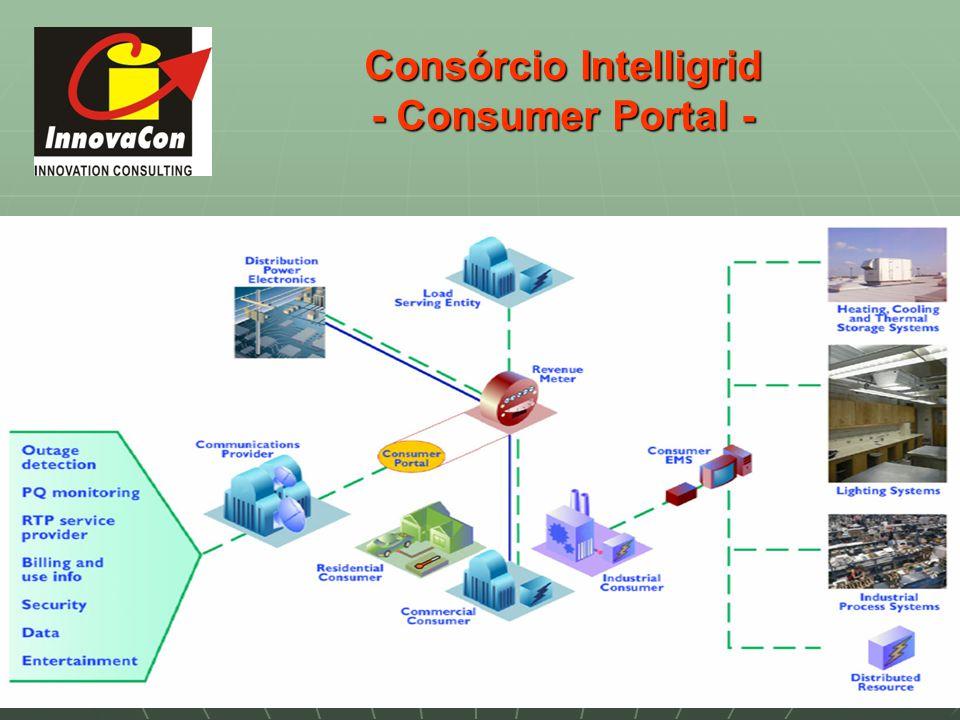 Consórcio Intelligrid - Consumer Portal -