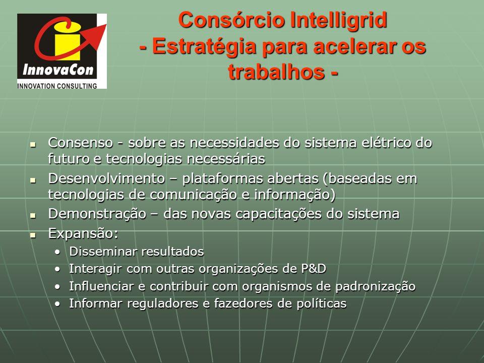 Consórcio Intelligrid - Estratégia para acelerar os trabalhos - Consenso - sobre as necessidades do sistema elétrico do futuro e tecnologias necessári
