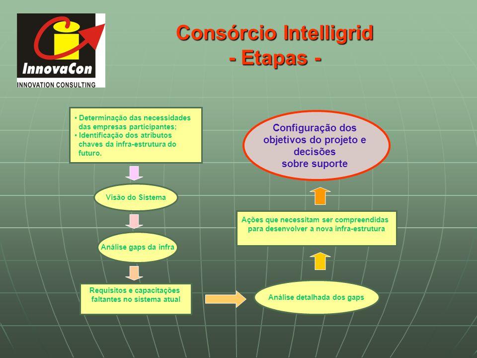 Consórcio Intelligrid - Etapas - Determinação das necessidades das empresas participantes; Identificação dos atributos chaves da infra-estrutura do fu