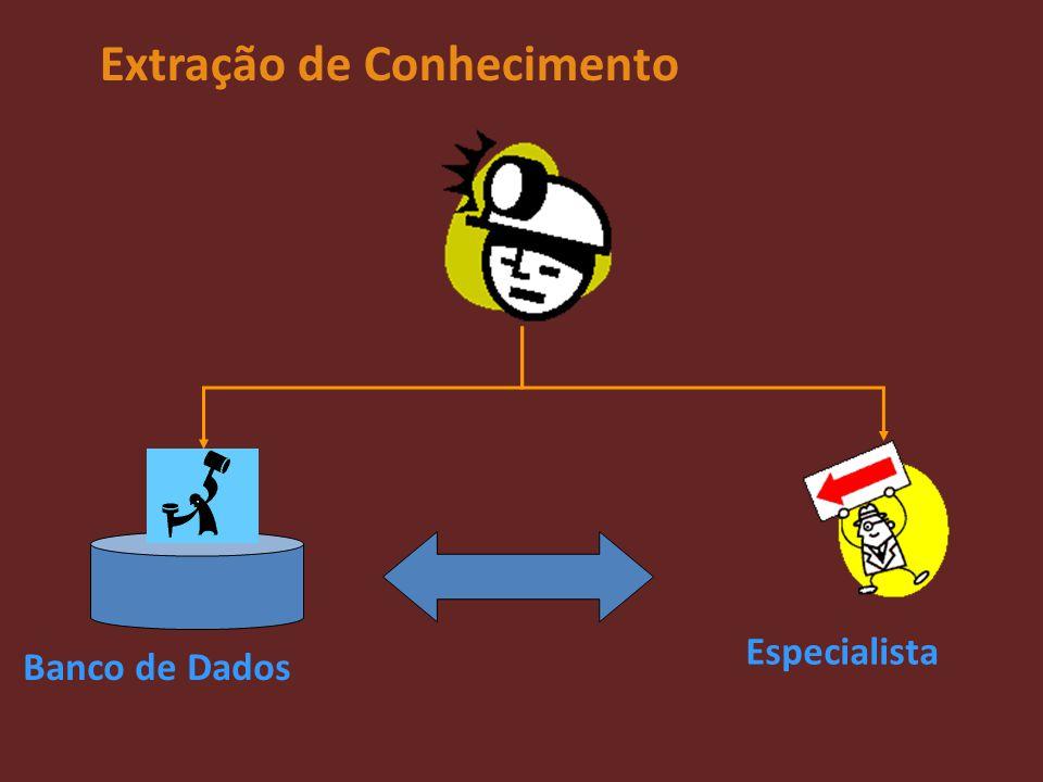 Extração de Conhecimento Banco de Dados Especialista