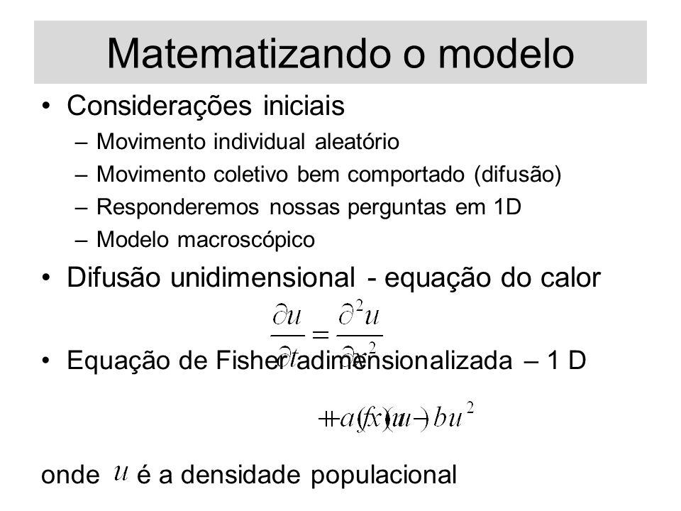 Matematizando o modelo Considerações iniciais –Movimento individual aleatório –Movimento coletivo bem comportado (difusão) –Responderemos nossas perguntas em 1D –Modelo macroscópico Difusão unidimensional - equação do calor Equação de Fisher adimensionalizada – 1 D onde é a densidade populacional