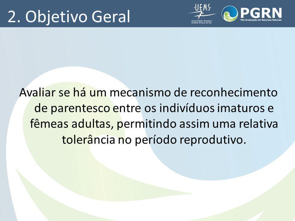 2. Objetivo Geral Avaliar se há um mecanismo de reconhecimento de parentesco entre os indivíduos imaturos e fêmeas adultas, permitindo assim uma relat