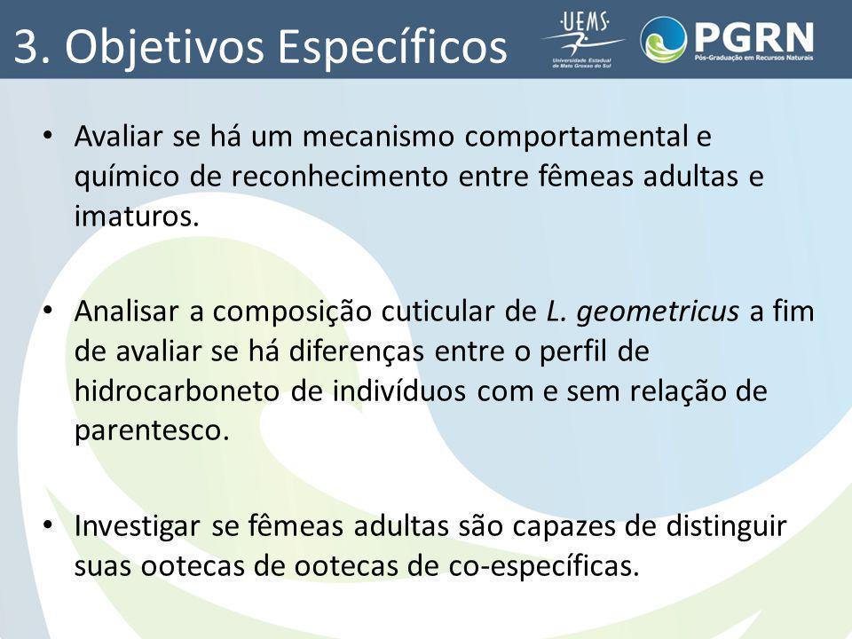 3. Objetivos Específicos Avaliar se há um mecanismo comportamental e químico de reconhecimento entre fêmeas adultas e imaturos. Analisar a composição