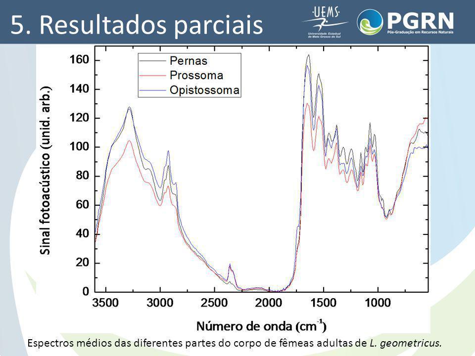 5. Resultados parciais Espectros médios das diferentes partes do corpo de fêmeas adultas de L. geometricus.