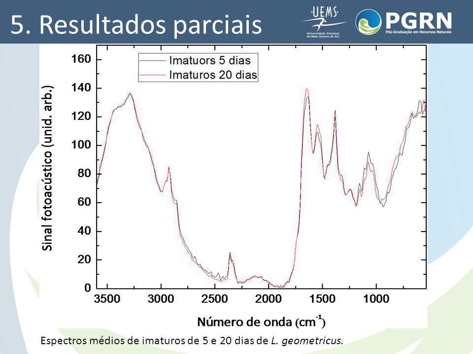 5. Resultados parciais Espectros médios de imaturos de 5 e 20 dias de L. geometricus.