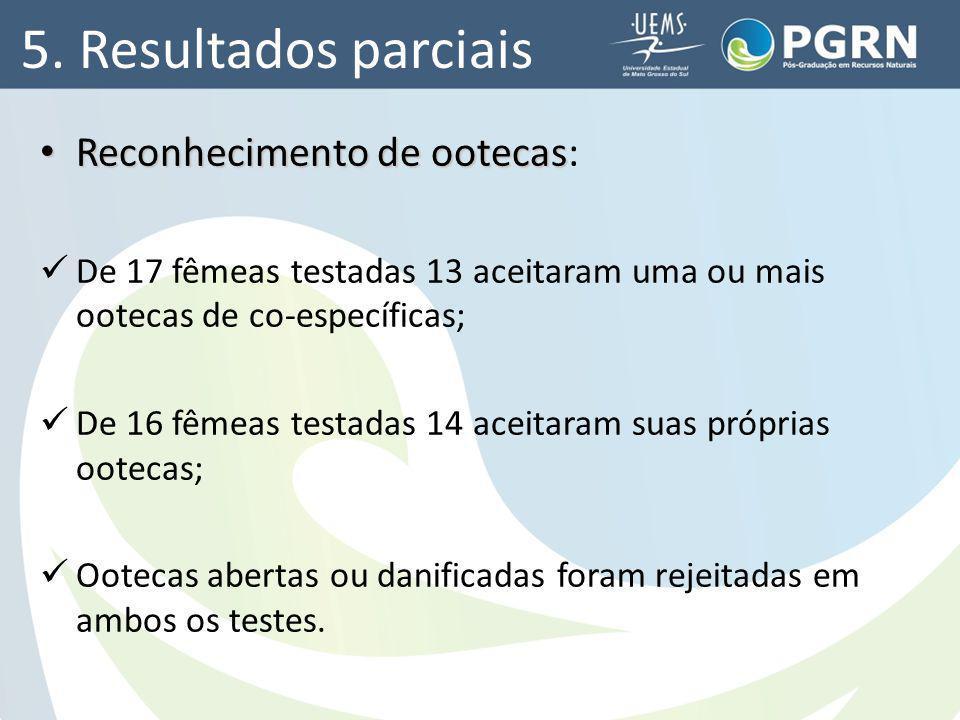 5. Resultados parciais Reconhecimento de ootecas Reconhecimento de ootecas: De 17 fêmeas testadas 13 aceitaram uma ou mais ootecas de co-específicas;