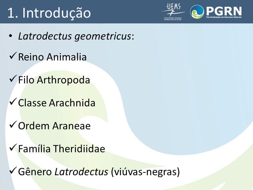1. Introdução Latrodectus geometricus: Reino Animalia Filo Arthropoda Classe Arachnida Ordem Araneae Família Theridiidae Gênero Latrodectus (viúvas-ne
