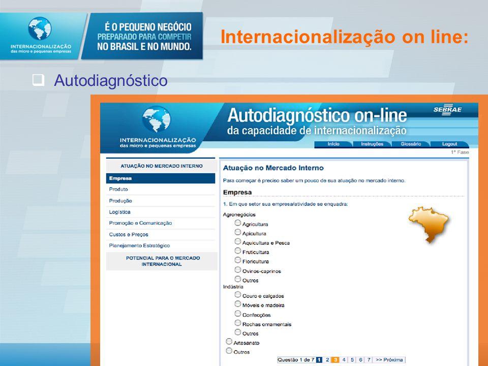 Internacionalização on line: Autodiagnóstico