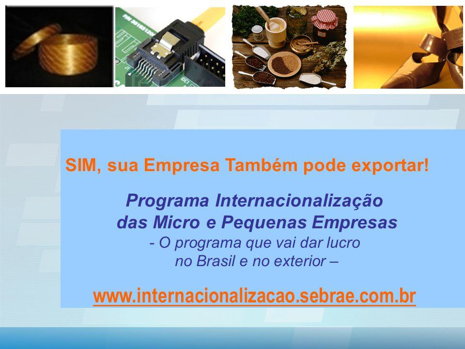 SIM, sua Empresa Também pode exportar.