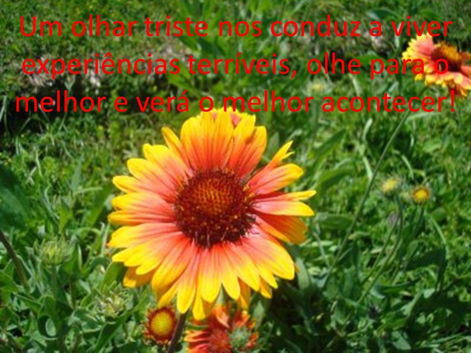 Um olhar triste nos conduz a viver experiências terríveis, olhe para o melhor e verá o melhor acontecer!