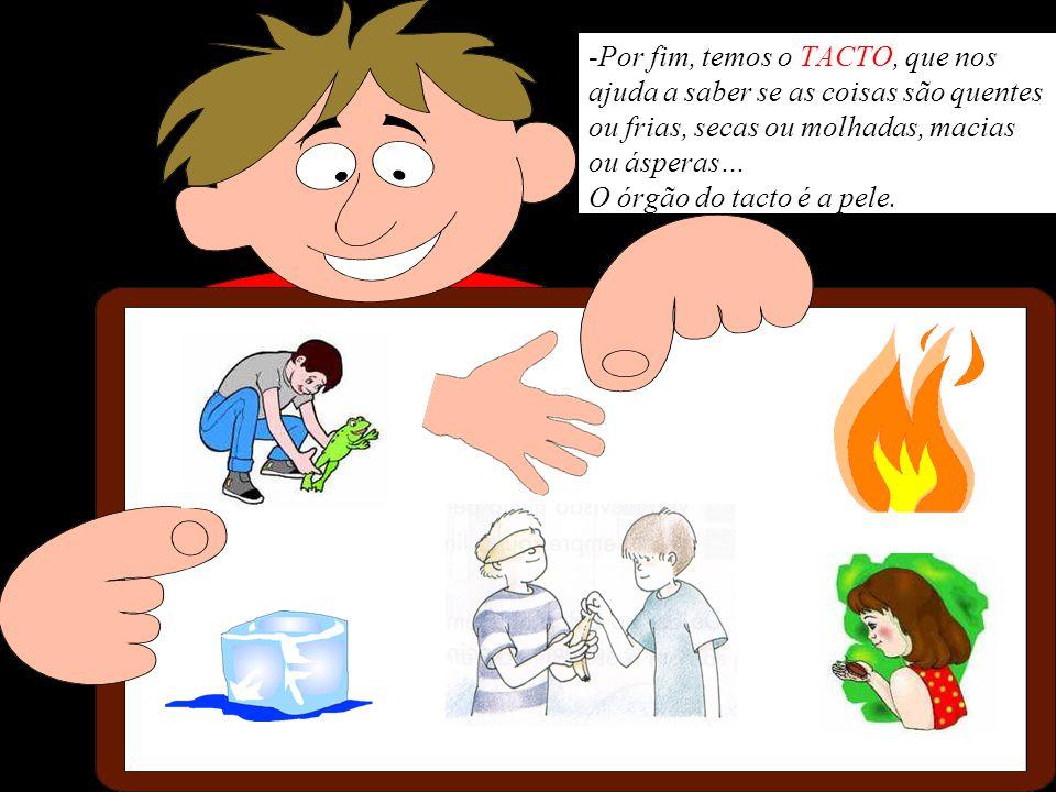 -Por fim, temos o TACTO, que nos ajuda a saber se as coisas são quentes ou frias, secas ou molhadas, macias ou ásperas… O órgão do tacto é a pele.