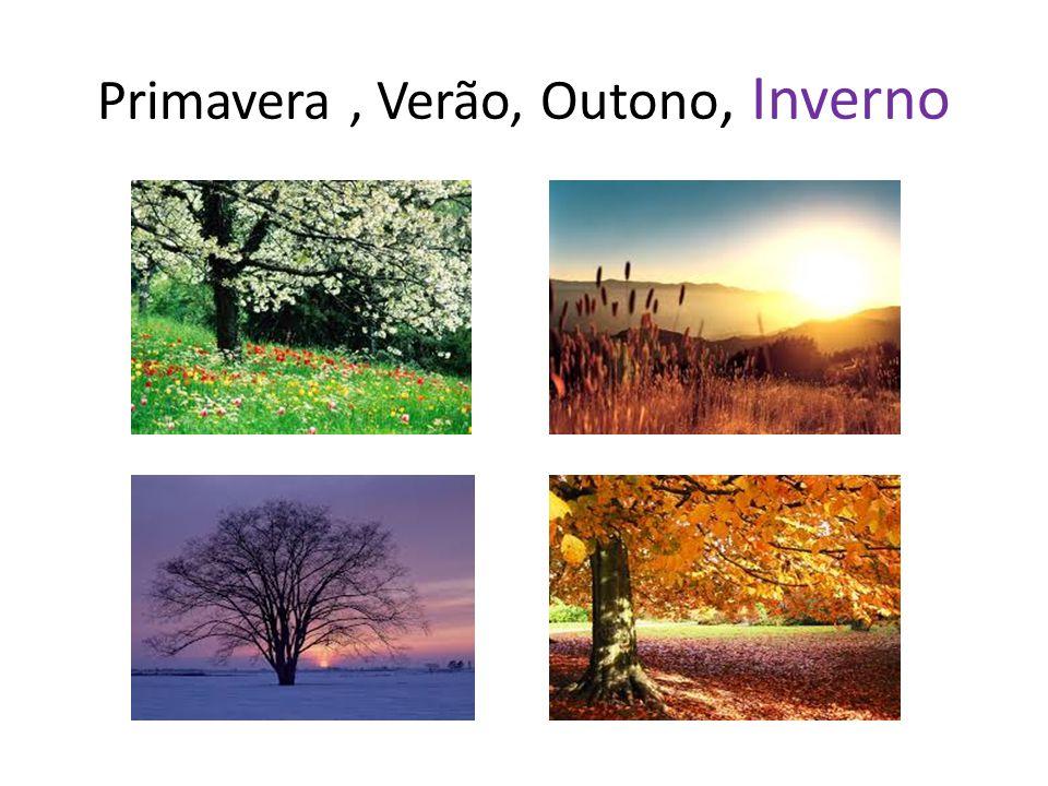 Primavera, Verão, Outono, Inverno