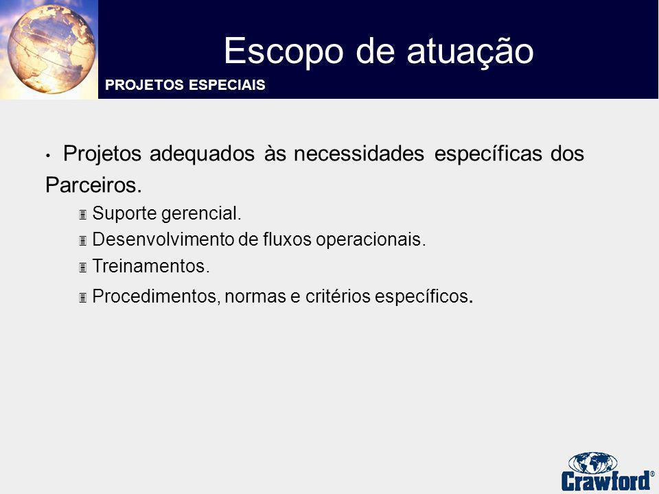 Projetos adequados às necessidades específicas dos Parceiros. 3 Suporte gerencial. 3 Desenvolvimento de fluxos operacionais. 3 Treinamentos. 3 Procedi