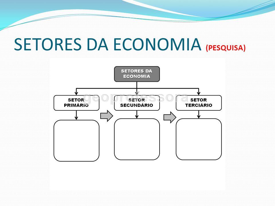SETORES DA ECONOMIA (PESQUISA)