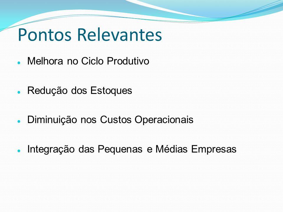 Pontos Relevantes Melhora no Ciclo Produtivo Redução dos Estoques Diminuição nos Custos Operacionais Integração das Pequenas e Médias Empresas