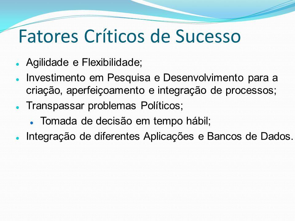 Fatores Críticos de Sucesso Agilidade e Flexibilidade; Investimento em Pesquisa e Desenvolvimento para a criação, aperfeiçoamento e integração de proc