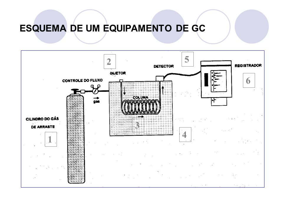 1) Fonte de gás de arraste em um cilindro de alta pressão - A escolha do gás de arraste (fase móvel) depende de certos fatores como preço, disponibilidade, pureza e tipo de detector utilizado.