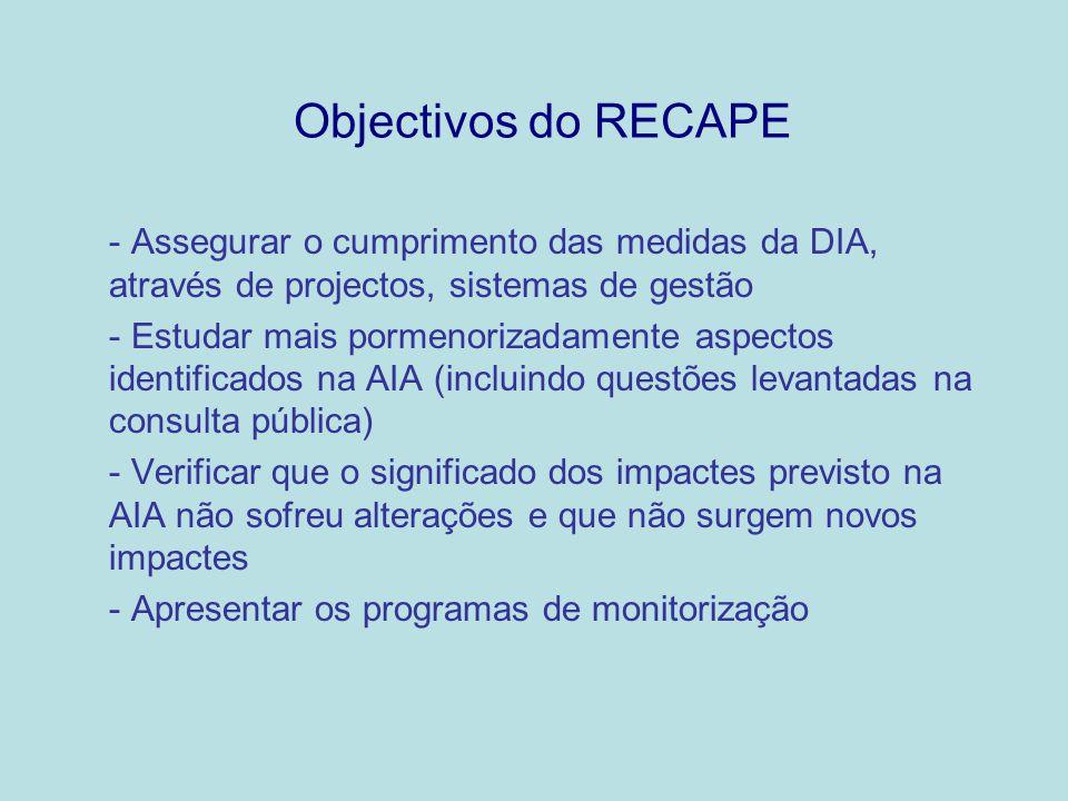 Objectivos do RECAPE - Assegurar o cumprimento das medidas da DIA, através de projectos, sistemas de gestão - Estudar mais pormenorizadamente aspectos