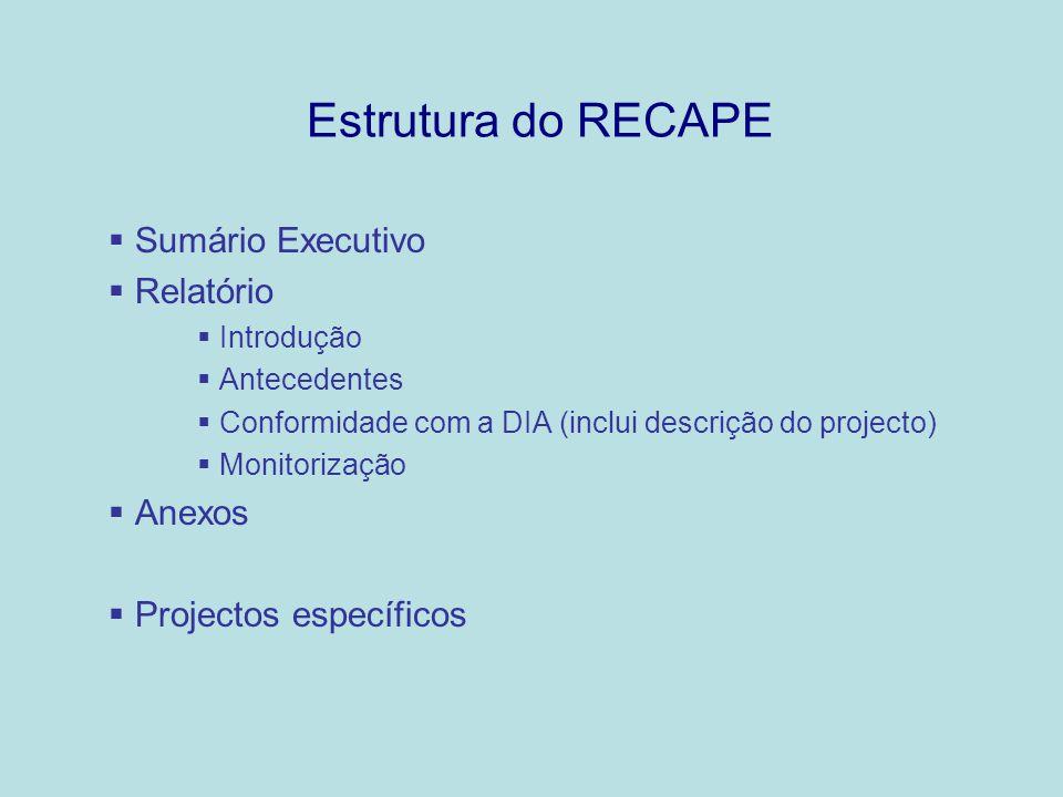 Estrutura do RECAPE Sumário Executivo Relatório Introdução Antecedentes Conformidade com a DIA (inclui descrição do projecto) Monitorização Anexos Pro