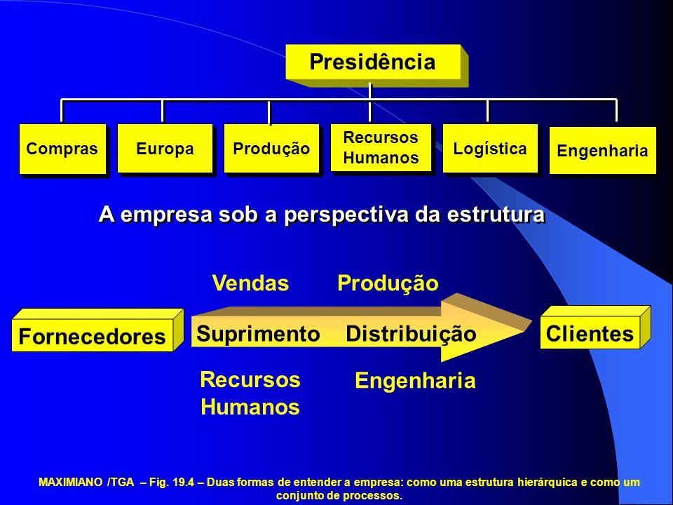 Presidência Compras Europa Engenharia Produção Recursos Humanos Logística A empresa sob a perspectiva da estrutura VendasProdução Recursos Humanos Eng