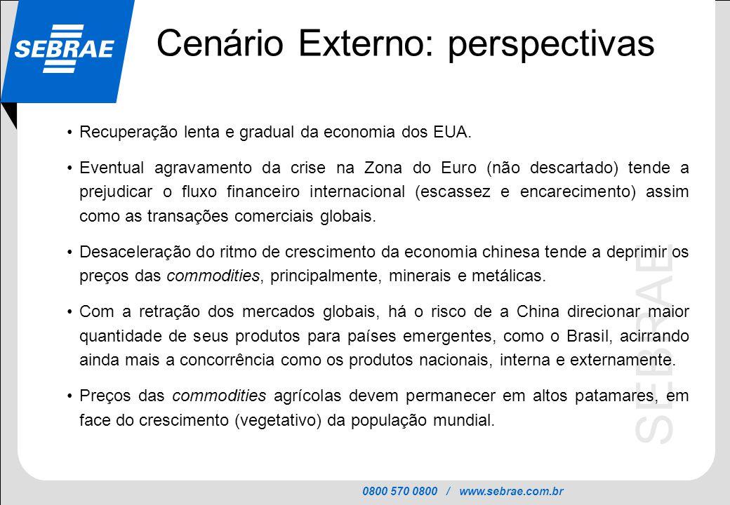 0800 570 0800 / www.sebrae.com.br SEBRAE Cenário Externo: perspectivas Recuperação lenta e gradual da economia dos EUA. Eventual agravamento da crise