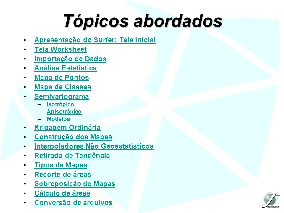 Tópicos abordados Apresentação do Surfer: Tela inicial Tela Worksheet Importação de Dados Análise Estatística Mapa de Pontos Mapa de Classes Semivario