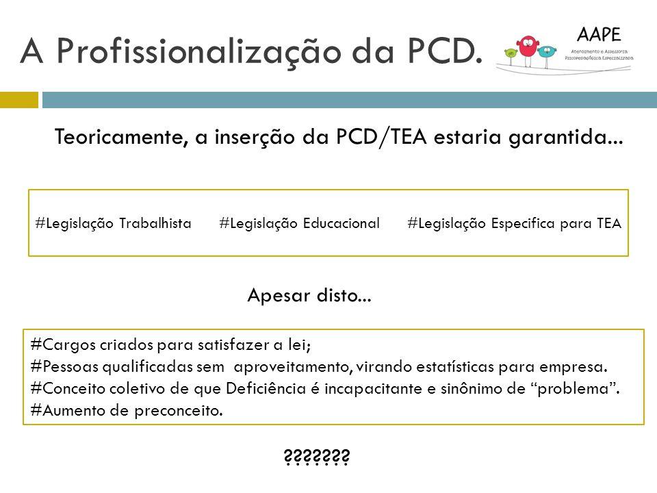 A Profissionalização da PCD. Teoricamente, a inserção da PCD/TEA estaria garantida... #Legislação Trabalhista #Legislação Educacional #Legislação Espe