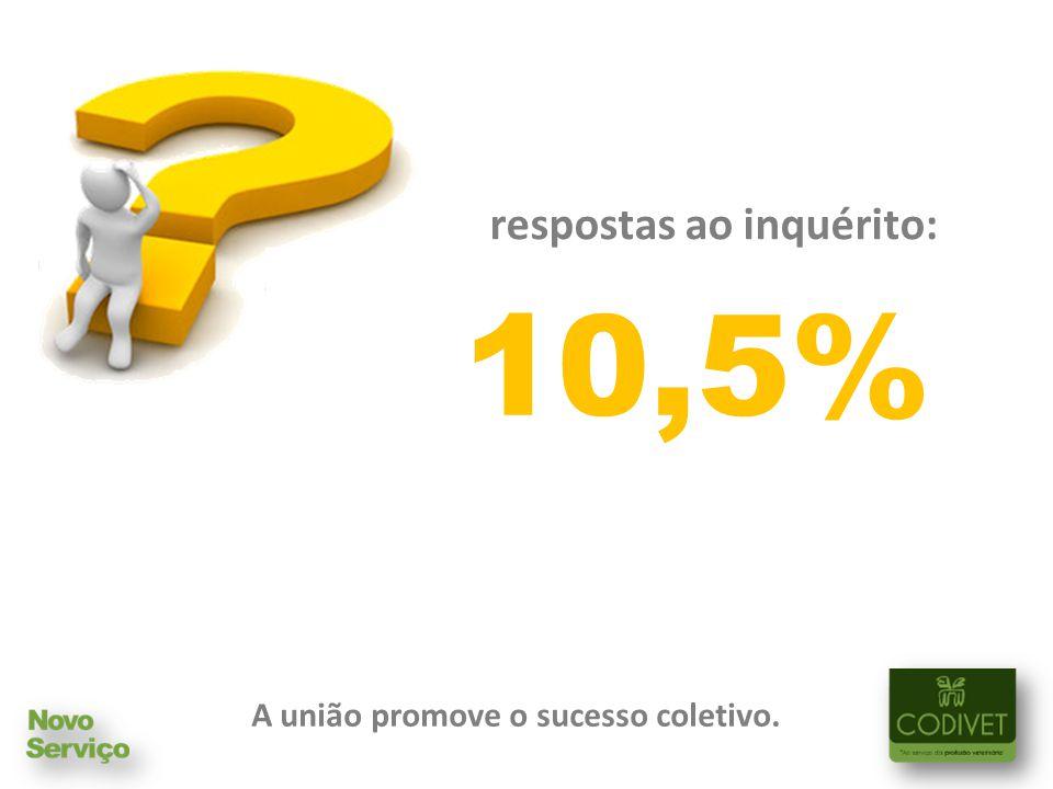 A união promove o sucesso coletivo. respostas ao inquérito: 10,5%