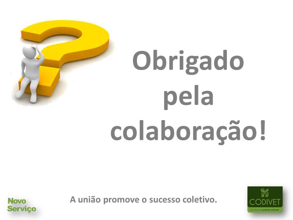 Obrigado pela colaboração! A união promove o sucesso coletivo.