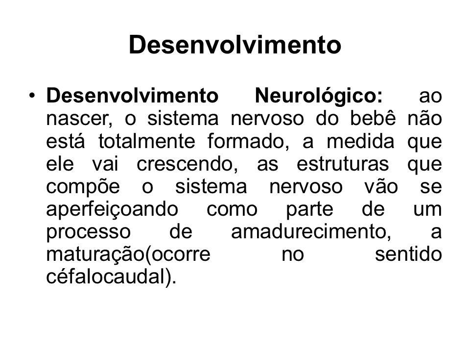 Desenvolvimento Desenvolvimento Neurológico: ao nascer, o sistema nervoso do bebê não está totalmente formado, a medida que ele vai crescendo, as estr