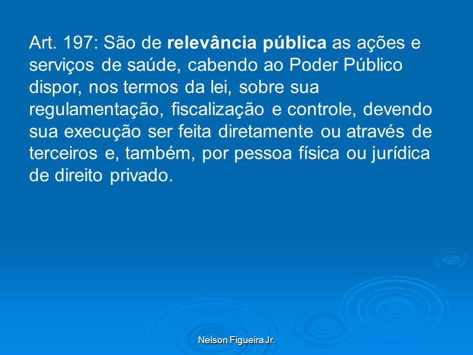 Nelson Figueira Jr.Art.