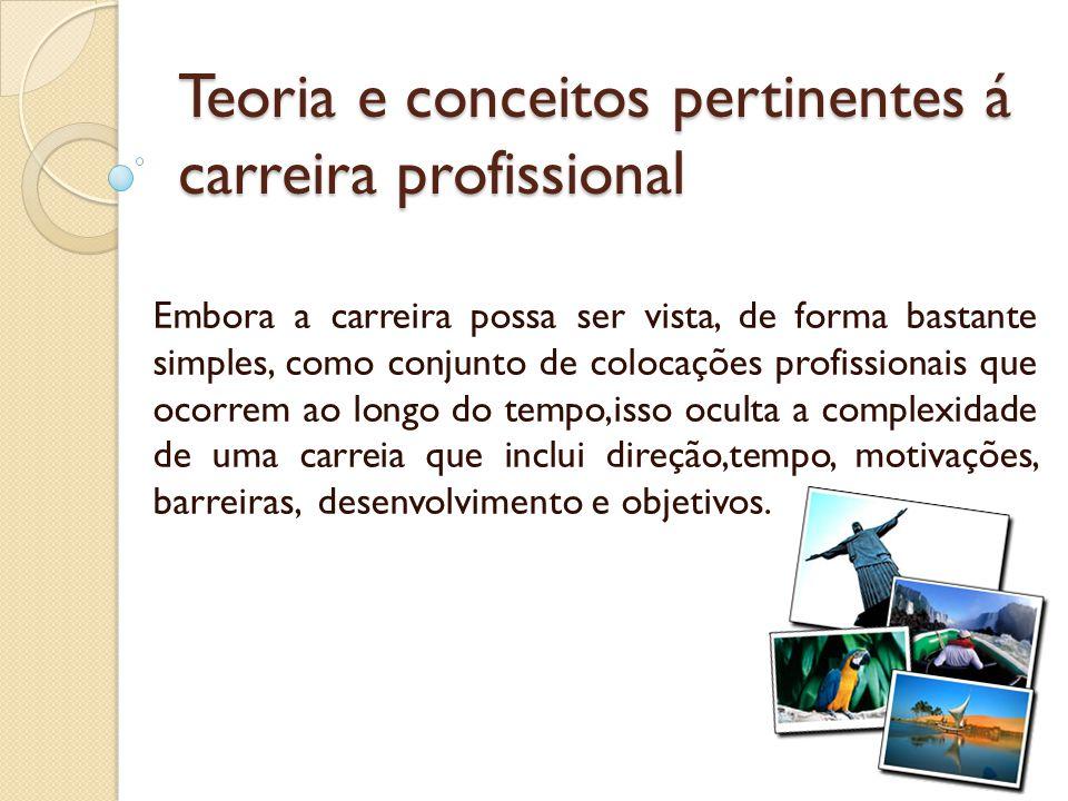 Teoria e conceitos pertinentes á carreira profissional Embora a carreira possa ser vista, de forma bastante simples, como conjunto de colocações profi