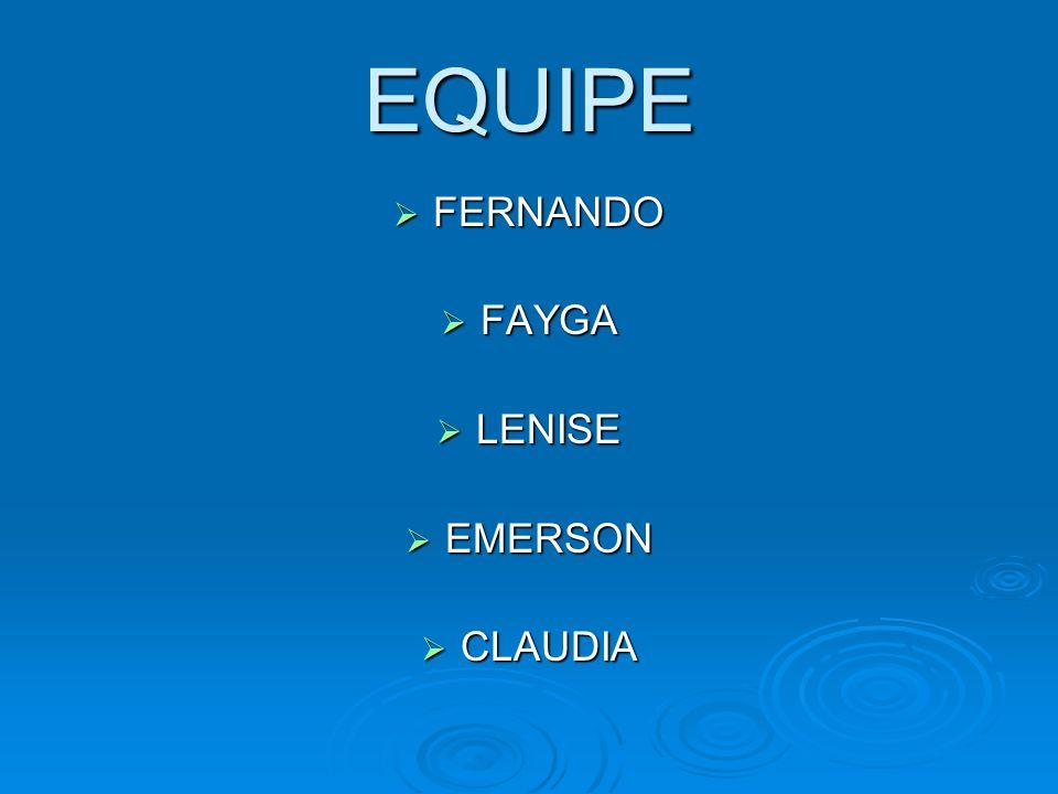EQUIPE FERNANDO FERNANDO FAYGA FAYGA LENISE LENISE EMERSON EMERSON CLAUDIA CLAUDIA
