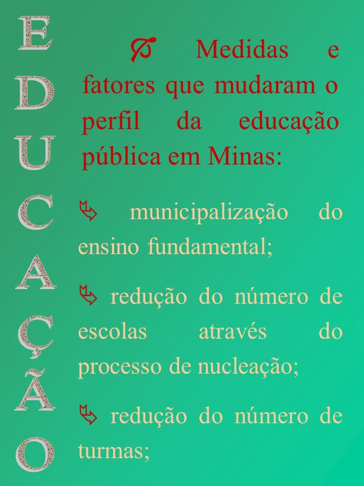 Medidas e fatores que mudaram o perfil da educação pública em Minas: municipalização do ensino fundamental; redução do número de escolas através do pr
