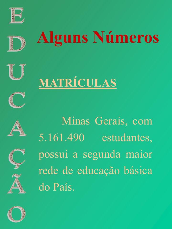 Alguns Números MATRÍCULAS Minas Gerais, com 5.161.490 estudantes, possui a segunda maior rede de educação básica do País.