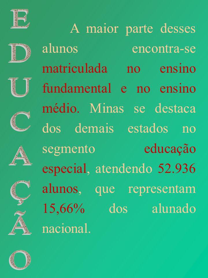 A maior parte desses alunos encontra-se matriculada no ensino fundamental e no ensino médio. Minas se destaca dos demais estados no segmento educação