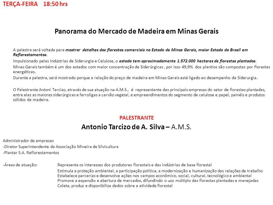 Panorama do Mercado de Madeira em Minas Gerais A palestra será voltada para mostrar detalhes das florestas comerciais no Estado de Minas Gerais, maior
